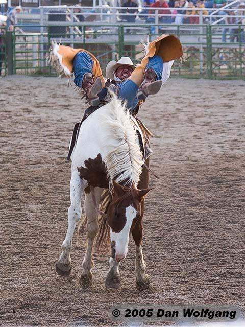 2 Jackson Hole Rodeo